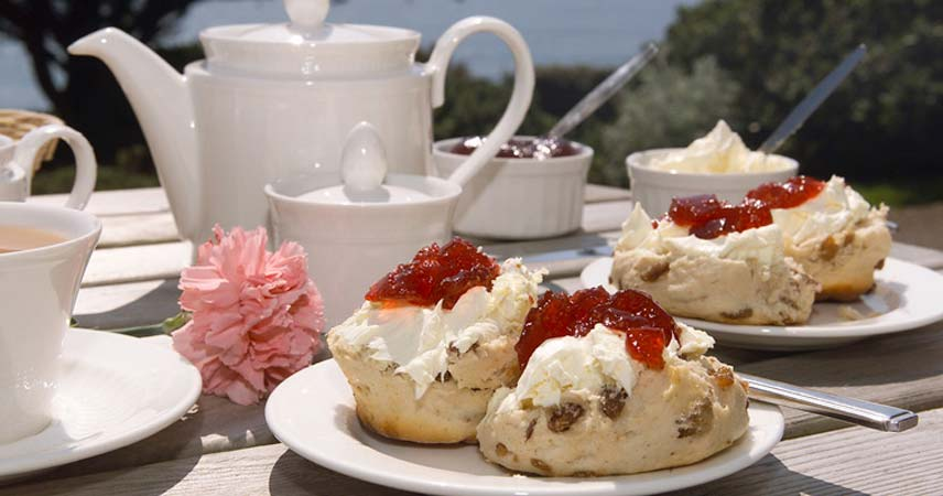 ARCHIVES DAY AT ROSWYN HOUSE WITH CREAM TEA -- Help us to raise funds to renovate and modernise our wonderful home for Ratlings.